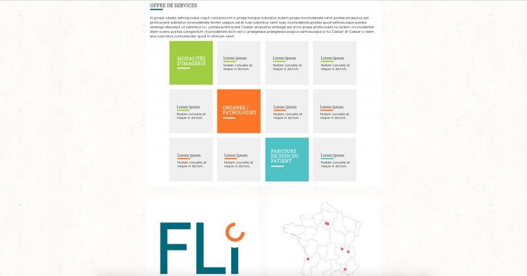 copie d'écran du projet fli